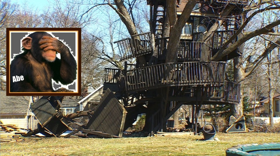 Should Treehouse Builders Be Licensed?